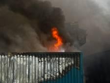 Waterschap: 45 kilo dode vis na brand bij De Knorhof