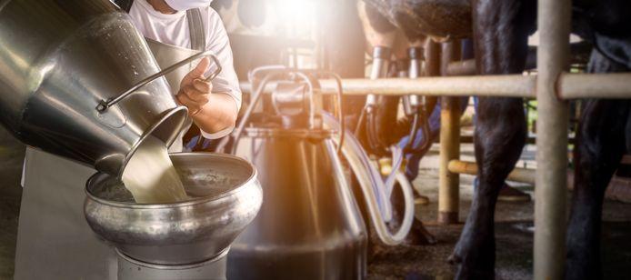 Rauwe melk kun je op steeds meer locaties in Nederland krijgen.