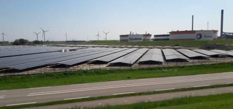 Borsele steekt stokje voor zonneparken op landbouwgrond