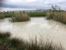 Waterschap onderzoekt of vervuild water bij Hasselt naar rioolwaterzuivering in Zwolle kan