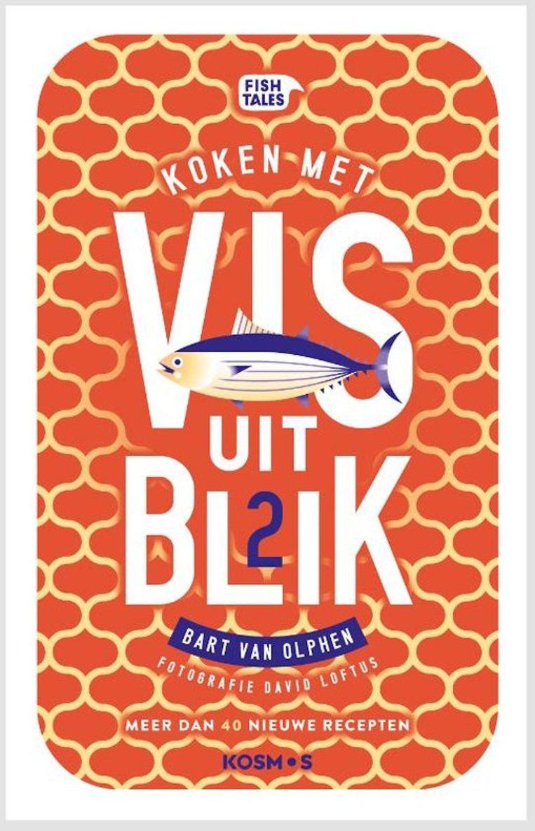 Vis uit blik 2, Bart van Olphen Beeld -