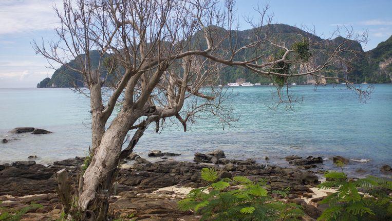 Koh Pi Pi zag er cool uit in de film The Beach. Tegenwoordig is het een vervuild strand waar Europese toeristen de flesjes van hun veel te dure Corona's ongegeneerd in het zand dumpen Beeld THINKSTOCK