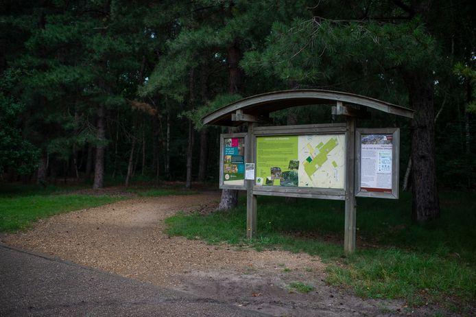 Een koppel buizerds verdedigt haar nest in het Elsenbos. De gemeente waarschuwt wandelaars, fietsers en joggers daarvoor