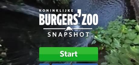 Burgers' Zoo komt met videogame