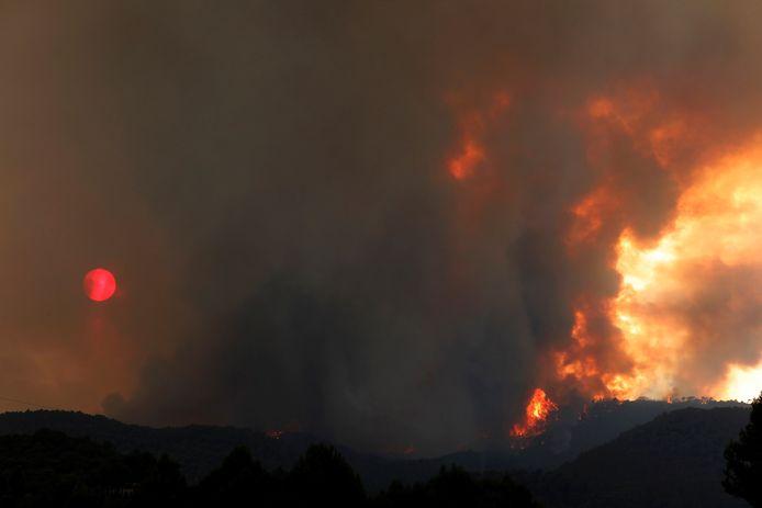 De brand brak zaterdagmiddag om een nog onbekende reden uit in de gemeente Santa Coloma de Queralt.
