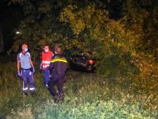 Inzittenden met de schrik vrij nadat auto in Apeldoorn in de bosjes vliegt