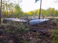 Natuurgebied vliegt 3 keer op 1 dag  in brand in Denekamp