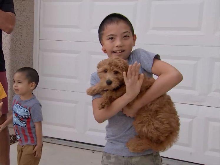 """Maxson (8) krijgt puppy met dezelfde oorafwijking cadeau: """"Dit doet me echt heel veel"""""""