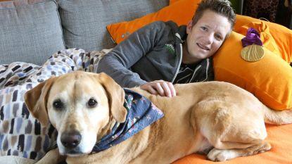 Marieke 'Wielemie' Vervoort overleden: stad Diest opent rouwregister