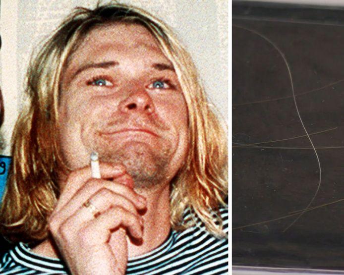 Les cheveux de Kurt Cobain sont mis aux enchères.
