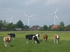Lopikerwaard wil energieprobleem Utrecht en Nieuwegein oplossen, maar stelt wel voorwaarden