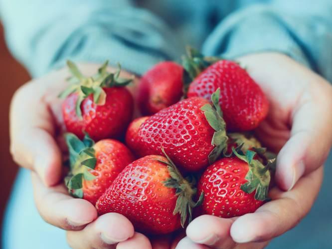 """""""Containerschepen zijn vervuilend, maar door hun immense lading valt de milieukost per kilo fruit toch nog mee"""": zo kies je duurzaam fruit"""