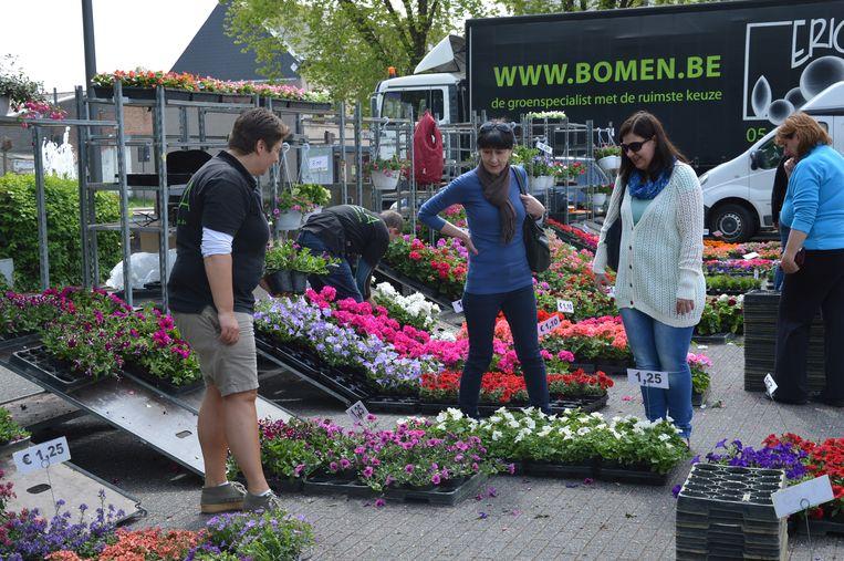 De bloemen- en tuinmarkt in Ninove, hier nog op het Dr. Hemerijckxplein.