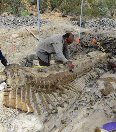 Nieuwe 'spraakzame' dinosaurus ontdekt in Mexico