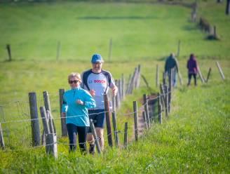 Eerste editie Hoeseltse Kluis Run brengt 1.500 deelnemers op de been