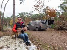 Een uurtje met andermans hond wandelen op je eigen terrein: 'Moet ik dáár nou een vergunning voor aanvragen?'