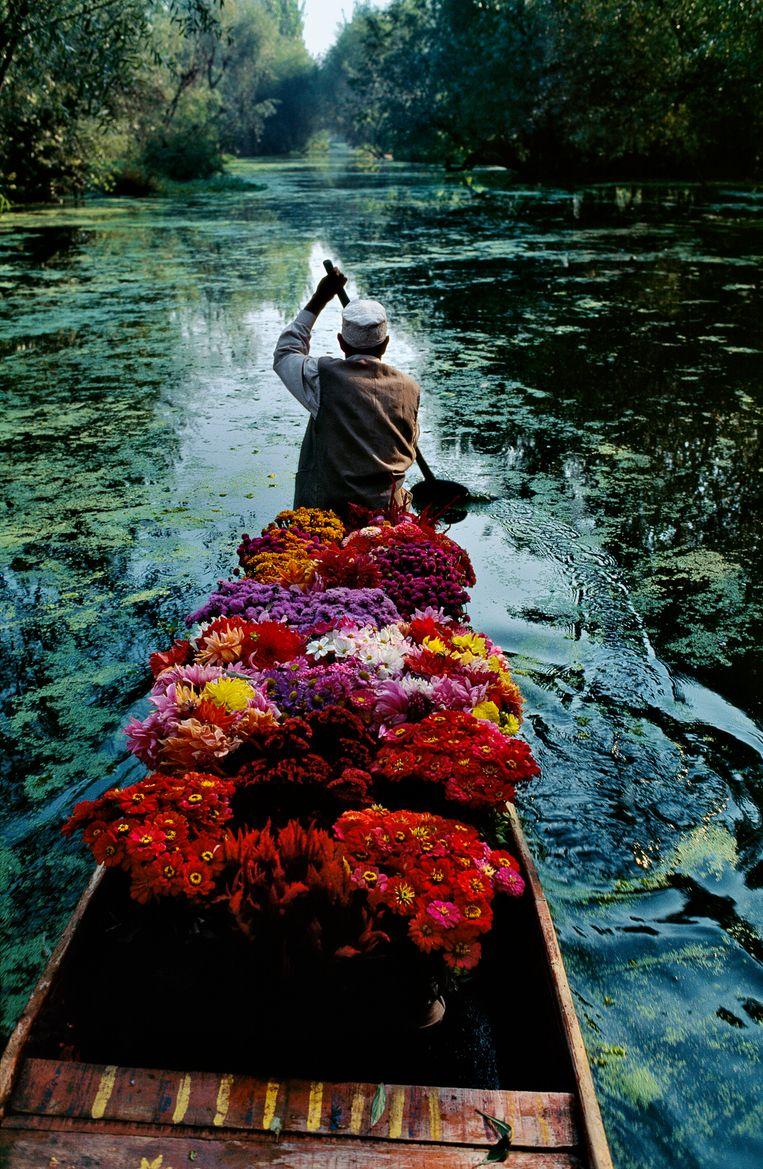 Dal-meer, Srinagar, Kashmir, 1996. Op de boot met een bloemenverkoper. Beeld Steve McCurry