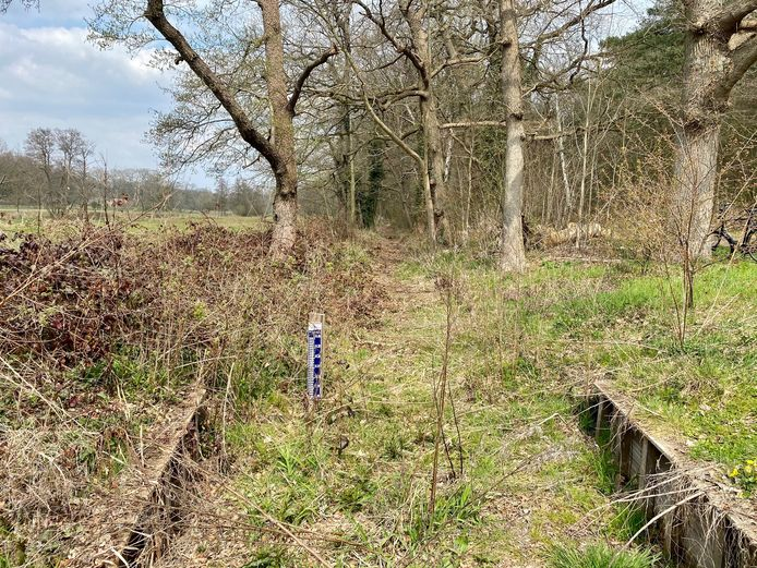 De Molenbeek in het Renkums Beekdal staat al bijna een jaar droog.