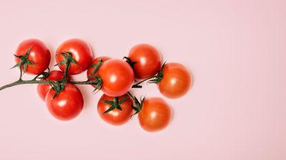 """""""Wie tomaten koopt, opent een blik vol tranen en pijn"""""""