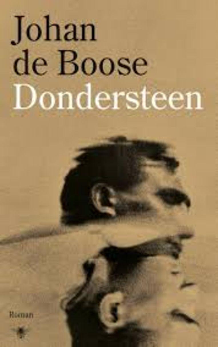 Johan De Boose – Dondersteen. Beeld rv
