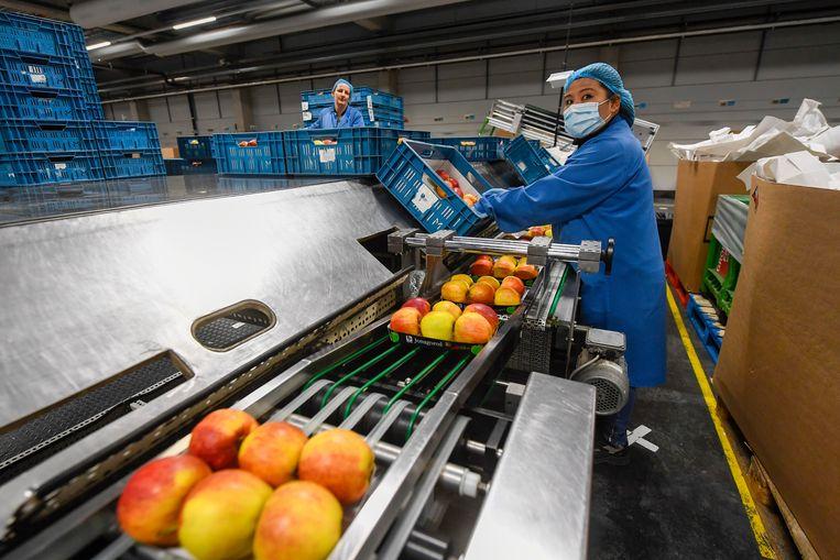 Bij mensen die in de voedingssector werken, loopt het aantal mensen dat slecht in zijn vel zit zelfs op tot 56 procent. Beeld Photo News