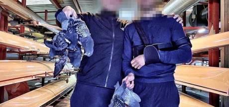 Groningse studenten poseren trots met doodgeschoten duiven, verontwaardigde reacties op social media