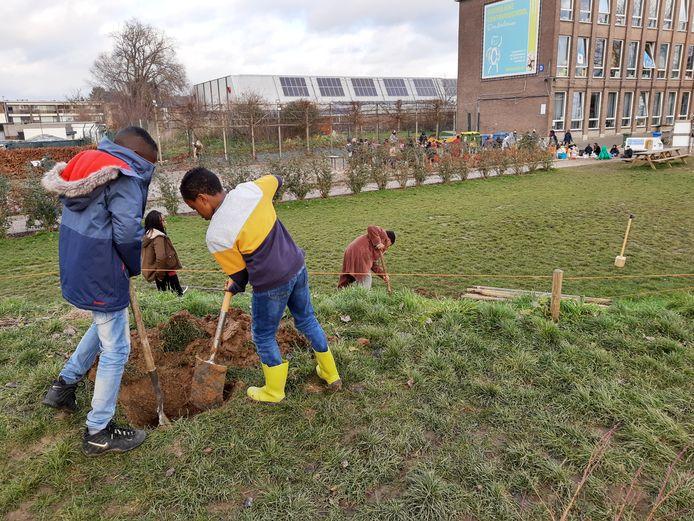De leerlingen van het KCD in Denderleeuw werken het tweede deel van de groene speelplaats af.
