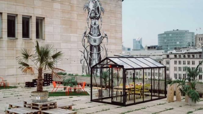 Binnenkort kan je tafelen in een serre op het dakterras van de Koninklijke Bibliotheek in Brussel
