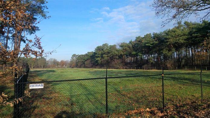 Een zeshonderd meter lang hekwerk op natuurgrond achter het bedrijf Veteka in Middelbeers is voor WNL de Beerzen aanleiding om naar de rechter te stappen. De gemeente had de vergunning hiervoor niet mogen verlenen, zo vinden zij.