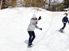 Op wintersport in de Loonse en Drunense Duinen: 'Je bent hier zo beneden'