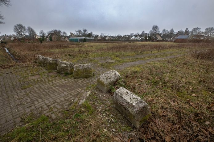 Een stuk braakliggend land, ten westen van de Zwembadweg in Sint-Oedenrode, is populair. Een aantal inwoners zet zich in om daar woningen te laten bouwen, maar de grondeigenaar zelf heeft ook een plan.