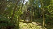 Drone volgt mountainbiker tijdens waanzinnige downhillrit