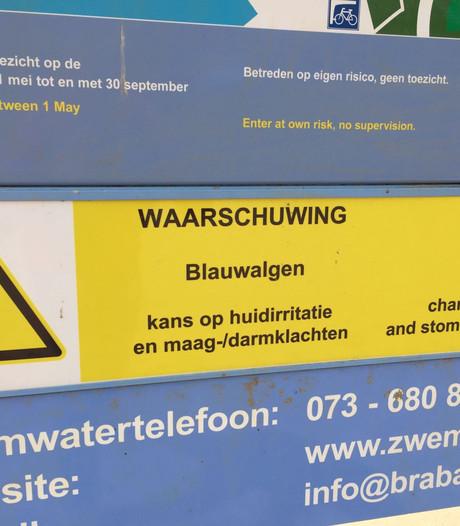 Meer plassen met blauwalg: zwemverbod in Aalst