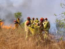 Na grote Peelbrand: natuurbrandteam in de maak voor Zuid-Nederland