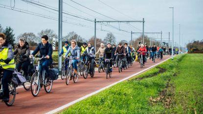 Raadslid Jokke Hennekam (sp.a) pleit voor extra maatregelen rond fiets-o-strade
