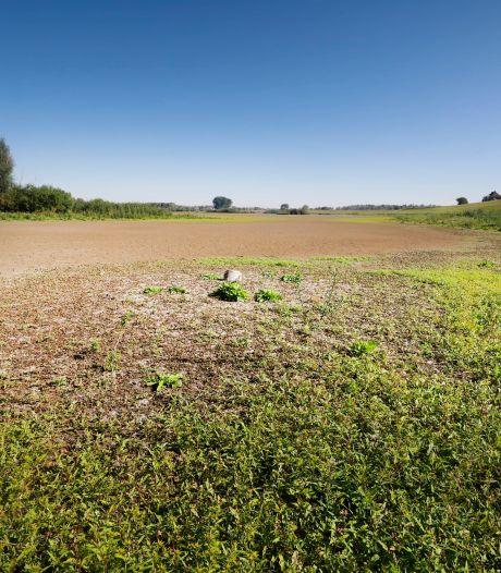 Oude Waal in Ooijpolder valt alweer droog: 'Er zit geen vis meer in'