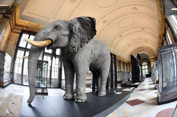 Het Afrikamuseum in Tervuren.