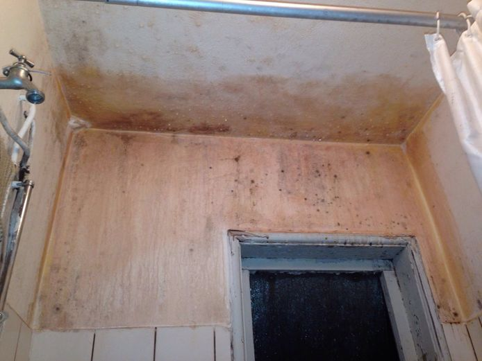 De douche van een van de woningen: vol schimmel.