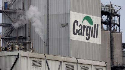 Stad geeft positief advies voor hogere lozingsnorm kobalt bij Cargill