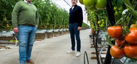 Tomatenkweker Marcel moet weg uit Harmelen: 'Als we dit hadden geweten, hadden we het anders gedaan'