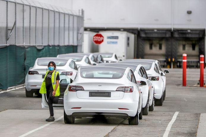 De lagere Tesla Model 3 was - mede dankzij overheidssubsidie - een enorme hit in Nederland.