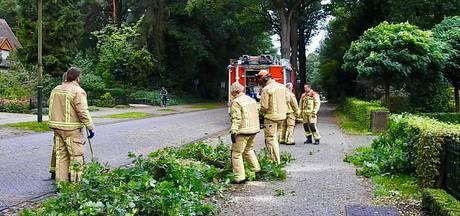 Meerdere meldingen stormschade in Zuidoost-Brabant