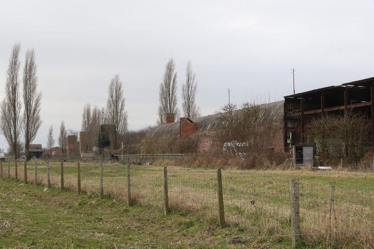 In deze gebouwen zouden nertsen gekweekt worden.