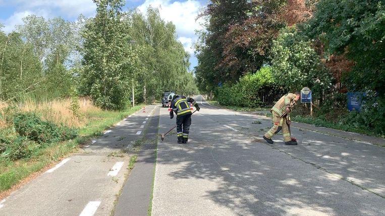 De brandweer maakte de Sijslostraat snel weer vrij.