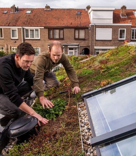 Alle duurzame plannen ten spijt: Nederlander gedraagt zich allesbehalve 'groen'
