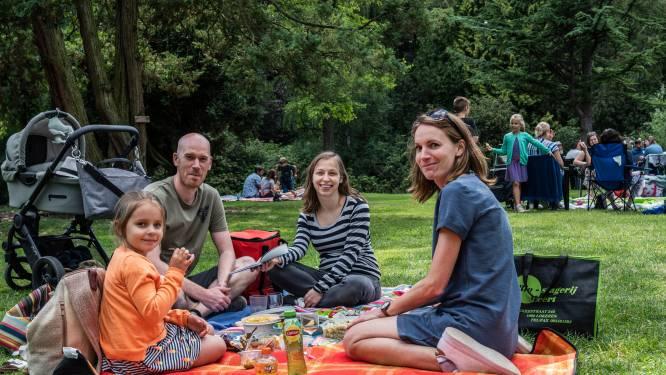 Zeelse Picknickdag op komst