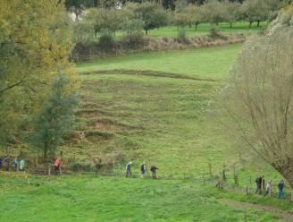 Ronse ontvangt container van jarig Natuurpunt op de grasweide van CC De Ververij