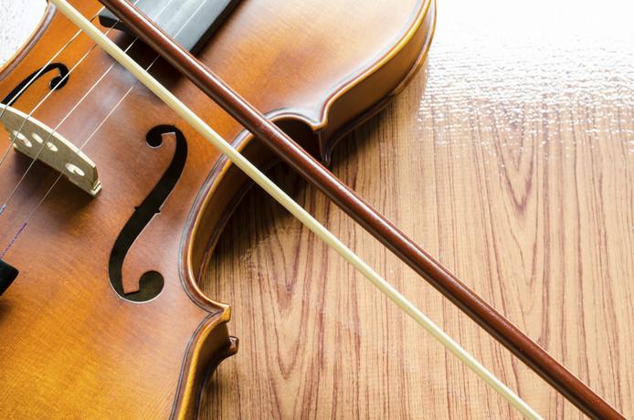 stockagenda stockfoto stockadr viool muziek optreden concert