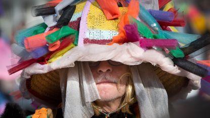 Zeven carnavalstoeten in 40 dagen: daarvoor moet je in Maasmechelen zijn