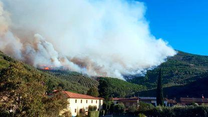 700 mensen geëvacueerd door bosbrand in Toscane